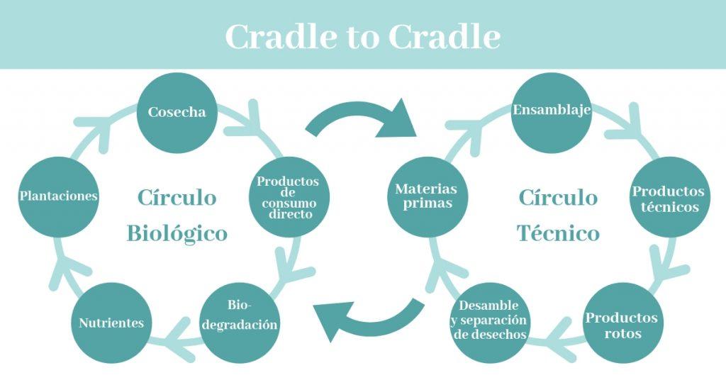 Ciclo de vida biológico y técnico